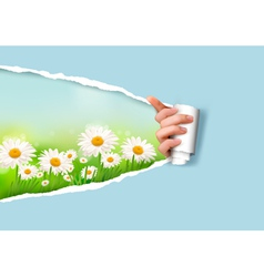 Nature background with flowers and ripped paper vector image