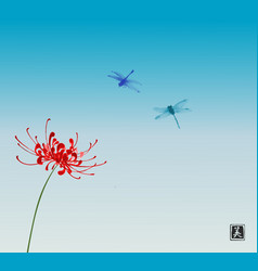 red chrysanthemum flower and two dragonflies on vector image