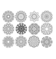 set of elegant calligraphic circular lace design vector image