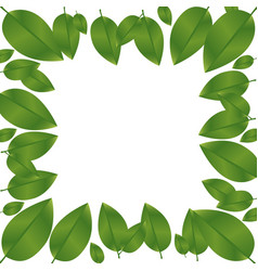 Border green leaves with branch nature icon vector