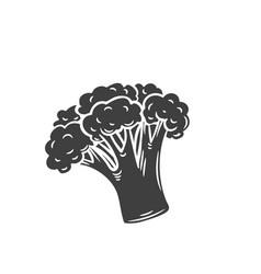 Broccoli glyph icon vector