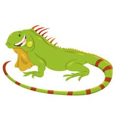 Cartoon green iguana animal character vector