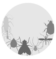 Circle insects vector
