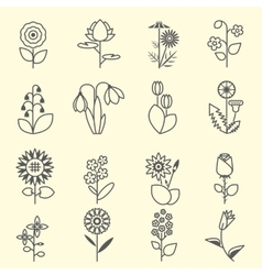 Flowers - set of isolated black line icons vector