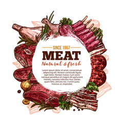 meat sketch poster with beef pork and chicken vector image