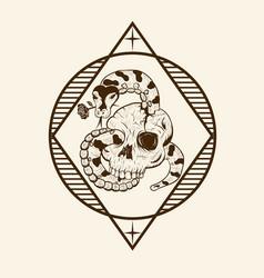python skull romance vector image