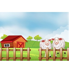 Sheeps inside the wooden fence with a barn vector image
