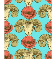 Sketch ram and poppy flower vector image