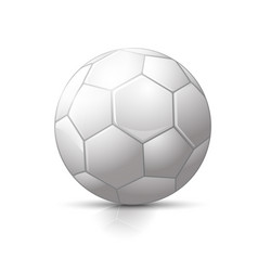soccer ball with classic design vector image