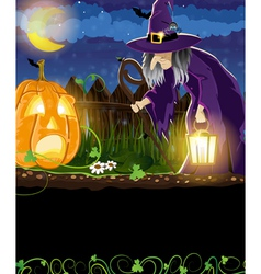 Wicked witch and jack o lantern vector