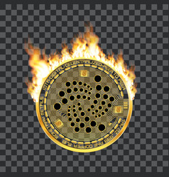 Crypto currency iota golden symbol on fire vector