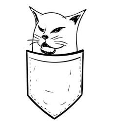 Doodle cat in a pocket vector