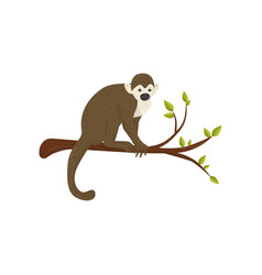 flat icon of small monkey sitting on tree vector image