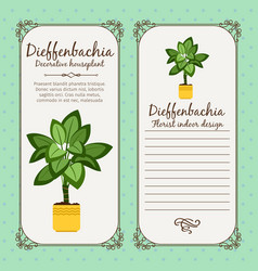 vintage label with dieffenbachia plant vector image