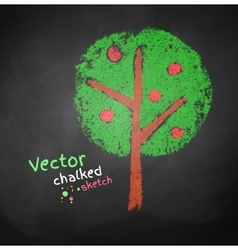 Chalked drawing of apple tree vector image vector image