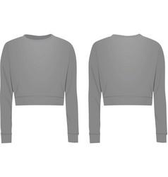 grey crop sweater vector image vector image