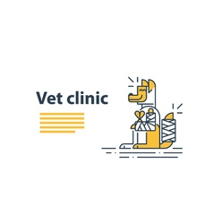 Animal health care veterinary concept vector