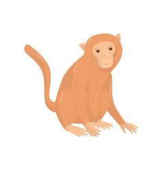 cartoon character of big african monkey wild vector image