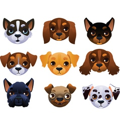 Dogs set vector image