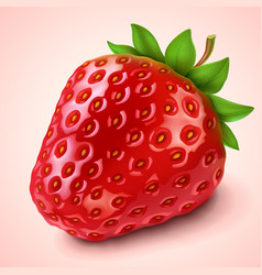 Strawberry vector