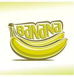 bananas branch vector image vector image