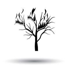 wildfire icon vector image