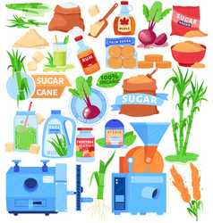 Cane sugar product substitutes vector