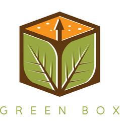 design template of the box with leaves vector image