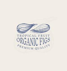 fresh fig badge fruit foliage label or logo cut vector image