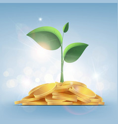Green plant with leaves growing on a pile of coins vector