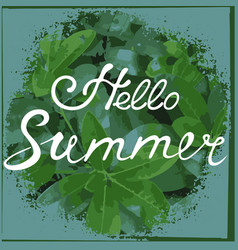 hello summer hand drawn lettering tropical poster vector image