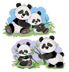 Panda bear characters cartoon vector