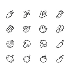 Vegetable icon set on white background vector