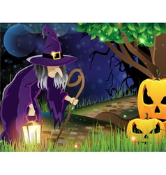 Wicked witch and Jack O lanterns vector