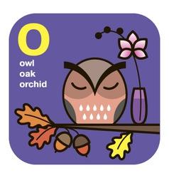 Abc owl oak orchid vector
