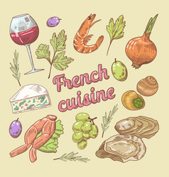 hand drawn french cuisine doodle with wine vector image vector image