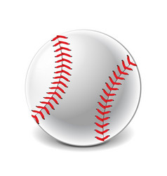 baseball ball isolated on white vector image vector image