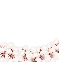 Abstract Border Made in Sakura Flowers Blossom vector image