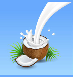 Coconut with milk splash vector