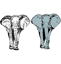 elephant coloring icon symbol vector image