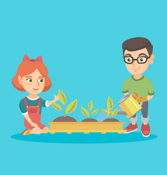 caucasian boy and girl planting a sprout vector image