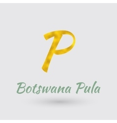 Golden Symbol of the Botswana Pula vector image vector image