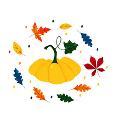 autumn sale hand drawn pumpkin and leaves flat vector image