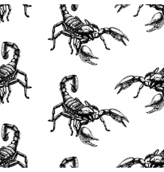 Hand drawn seamless pattern with scorpion vector image
