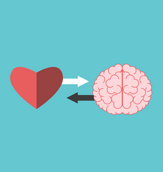 heart and brain interaction vector image