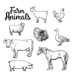 Set of farm animals on the white background vector image