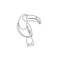 single continuous line drawing adorable toucan vector image