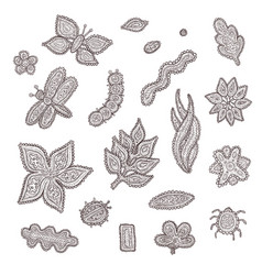 sketch graphic collection of stylized vector image