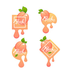 sweet peach flavor label or sticker and labels vector image