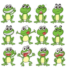 Different faces of a frog vector